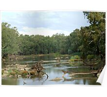 Murrimbidgee River- Wiradjuri Country Poster