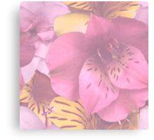 Soft Spring Flowers Canvas Print