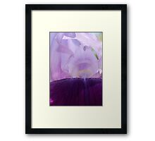 Shades of Purple ~ Purple Iris Flower Framed Print