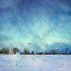 Silent Winter Fields by jodyangel