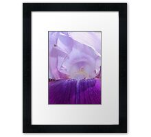 Purple Iris Flower with Bug Friend Framed Print