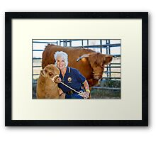 Cows 01 Framed Print