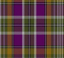 00363 Wexford County, Crest Range Fashion Tartan  by Detnecs2013