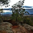 Vista views from the Melville Caves by Jennifer Craker