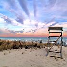 Carter Lifeguard Stand Sunset by David Turton
