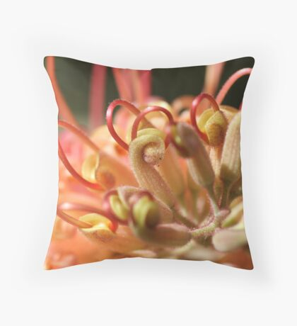 Grevilleas in Bloom Throw Pillow