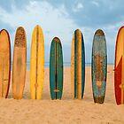 Longboards by David Turton