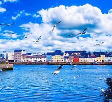 Looking Across Galway Harbor by Mark Tisdale