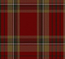 00358 Tyrone County District Tartan  by Detnecs2013