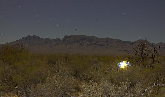 Starry Night in the Desert by Tamas Bakos