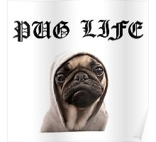 pug life funny Poster