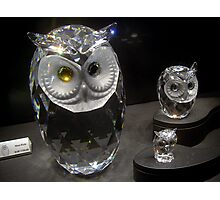 Crystal Owls Photographic Print