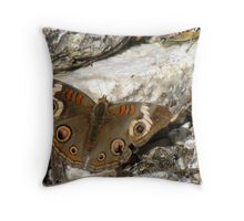 Butterfly ~ Common Buckeye Throw Pillow