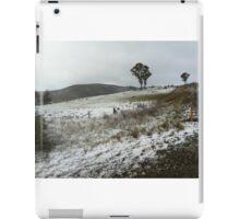 Snow 1 iPad Case/Skin