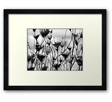 The Last Framed Print