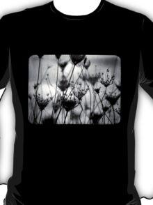 The Last T-Shirt