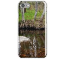 Reflection of Three Trees iPhone Case/Skin