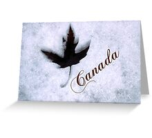 Red Maple Leaf Snow Canada Greeting Card