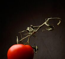 Red tomato by Andreas  Berheide