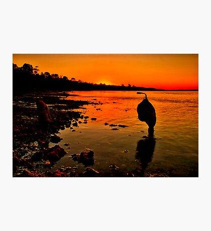 """Sundown"" Photographic Print"