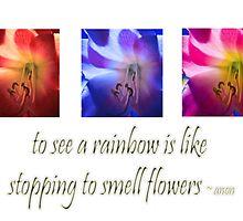 Flowers & Rainbows by Deborah McGrath