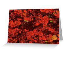 Red Tide Greeting Card
