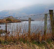 Lone fence by michaelpaule