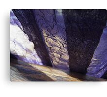 morning shadow Canvas Print