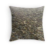 Lake Wakatipu Throw Pillow