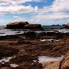 Rugged Coastland by myraj