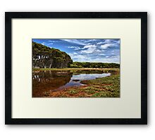 Reflections of Summer Framed Print