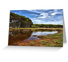 Reflections of Summer Greeting Card