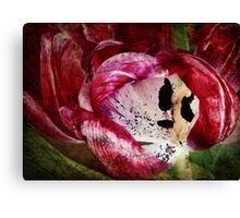Requiem for a Tulip - Collaboration with monocotylidono Canvas Print