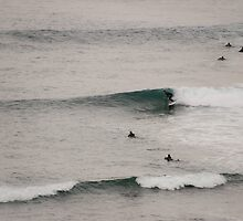 Surfin' Flinders by John Billing