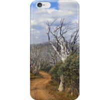 The track less travelled iPhone Case/Skin