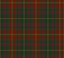 00343 Meath County District Tartan  by Detnecs2013