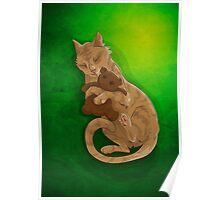 cathursday #30 Poster