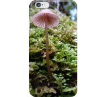 Single Pink iPhone Case/Skin