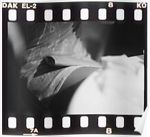 Sensual young lady in short skirt in wedding black and white slide film 35mm analog Poster