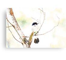 Bird Camouflaged By An Overcast Sky Canvas Print
