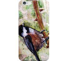 BC birds series-3 iPhone Case/Skin
