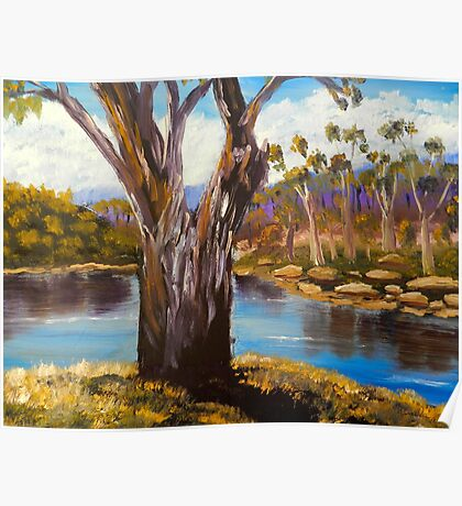 Gums Trees of the Snowy River Poster