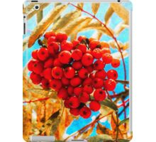 Ashberry artistic iPad Case/Skin