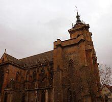 Colmar cathedral by Cornelia Togea
