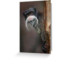 Are you my Barber??? Greeting Card