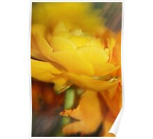 Her Majesty in Bloom Poster
