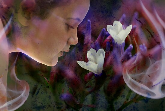 Dreaming in Colour by micklyn