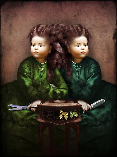 The hair affair by Catrin Welz-Stein