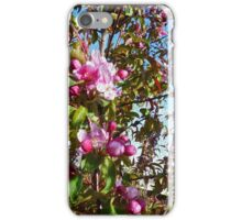 crab apple blossoms, spring tree art- abstract painting iPhone Case/Skin