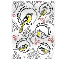 Birds & Barbed Wire Poster